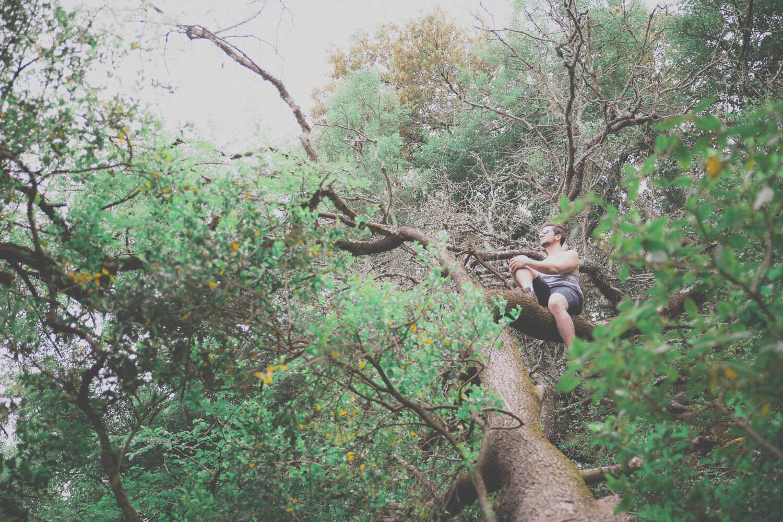 Photographe de mariage fine art dans la forêt
